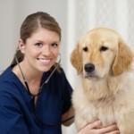 Le métier d'auxiliaire de santé animale est-il fait pour vous?